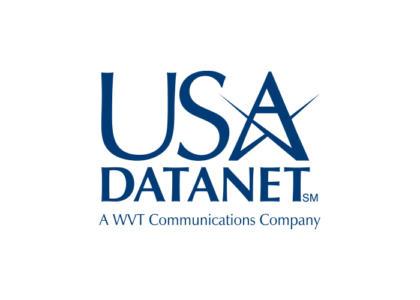 usa datanet logo
