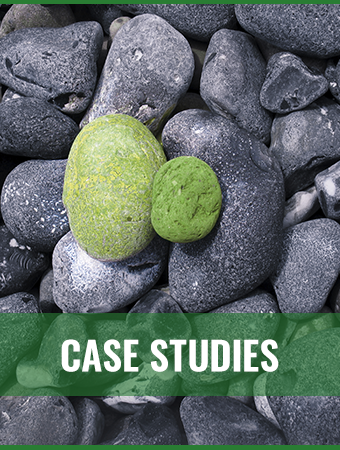 Kompani Group case studies