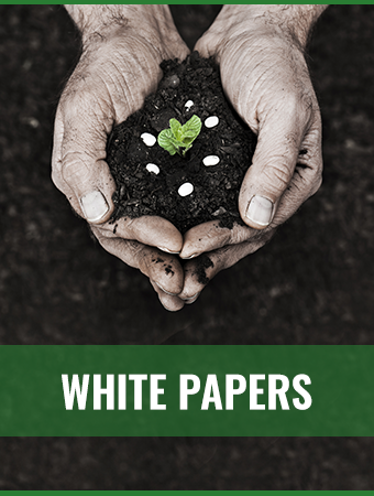 Kompani Group White Papers side banner
