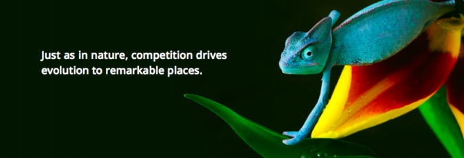 competition-drives-evolution